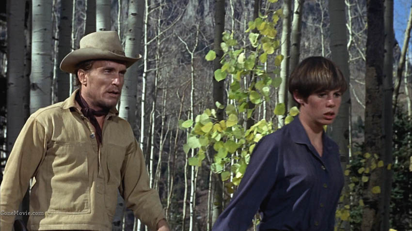 Robert Duvall (Ned Pepper)  and his gang capture Kim Darby (Mattie Ross), and he forces Cogburn and Le Boeuf to abandon the girl.