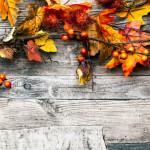 Happy Thanksgiving, Wordplayers!