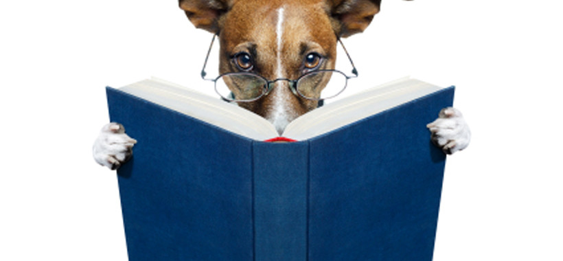 why-non-writers-are-the-best-beta-readers