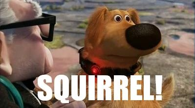 Up Dug the Dog Squirrel