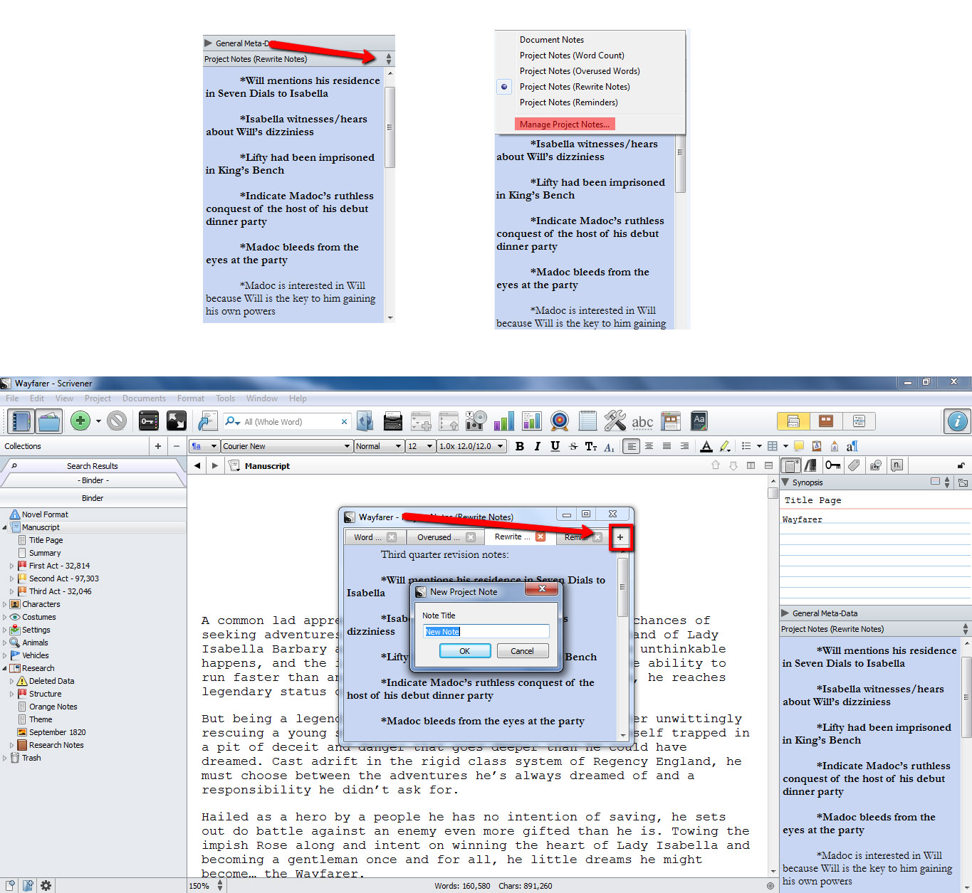How to Add More Project Notes in Scrivener