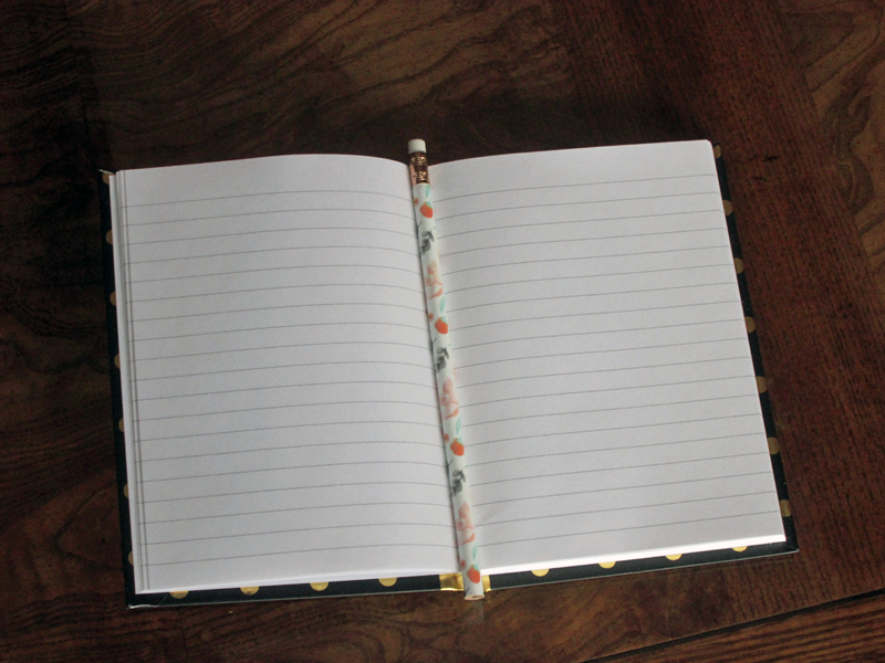 Meraki Literary Subscription Box Notebook and Pencil
